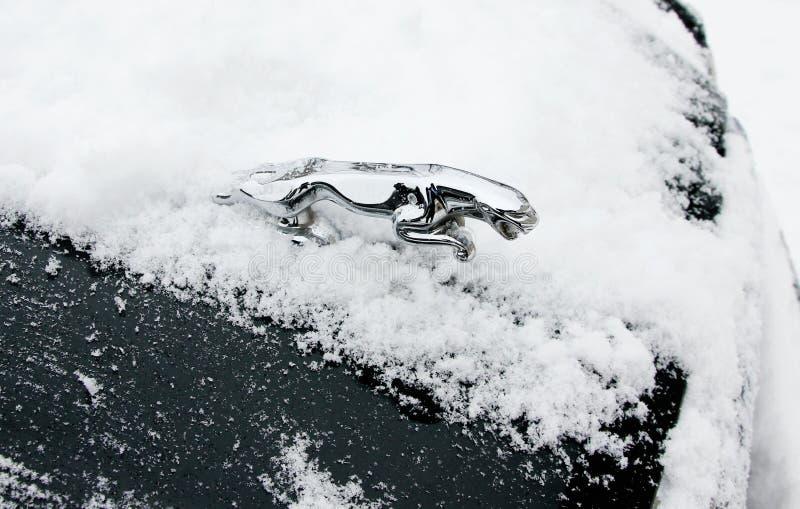Símbolo del coche del jaguar en nieve imágenes de archivo libres de regalías