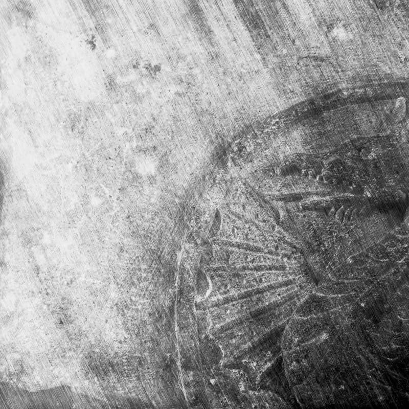 Símbolo del dragón en una pared medieval de la fortaleza del castillo imagen de archivo