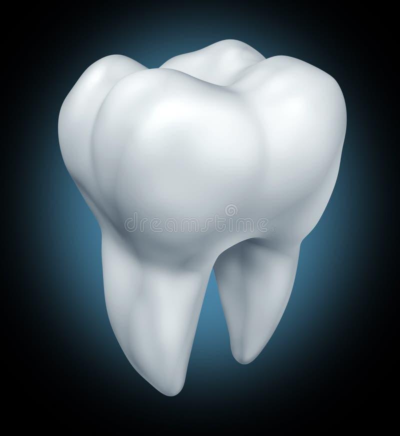 Símbolo dental de la salud del diente ilustración del vector