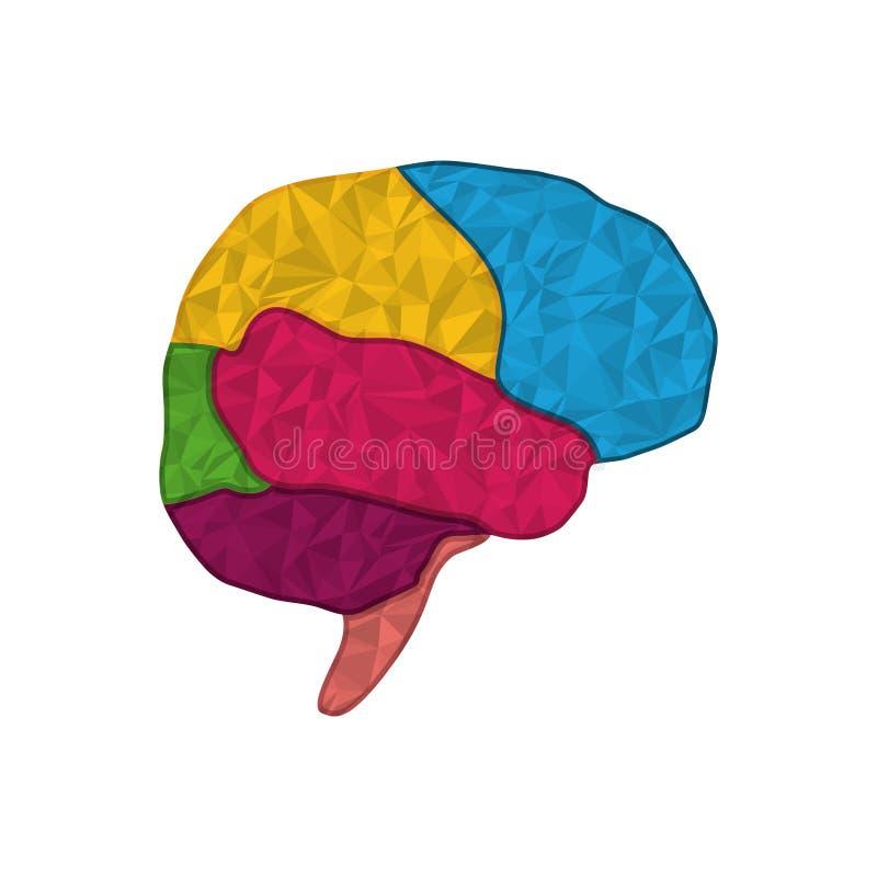 Símbolo do cérebro humano ilustração stock