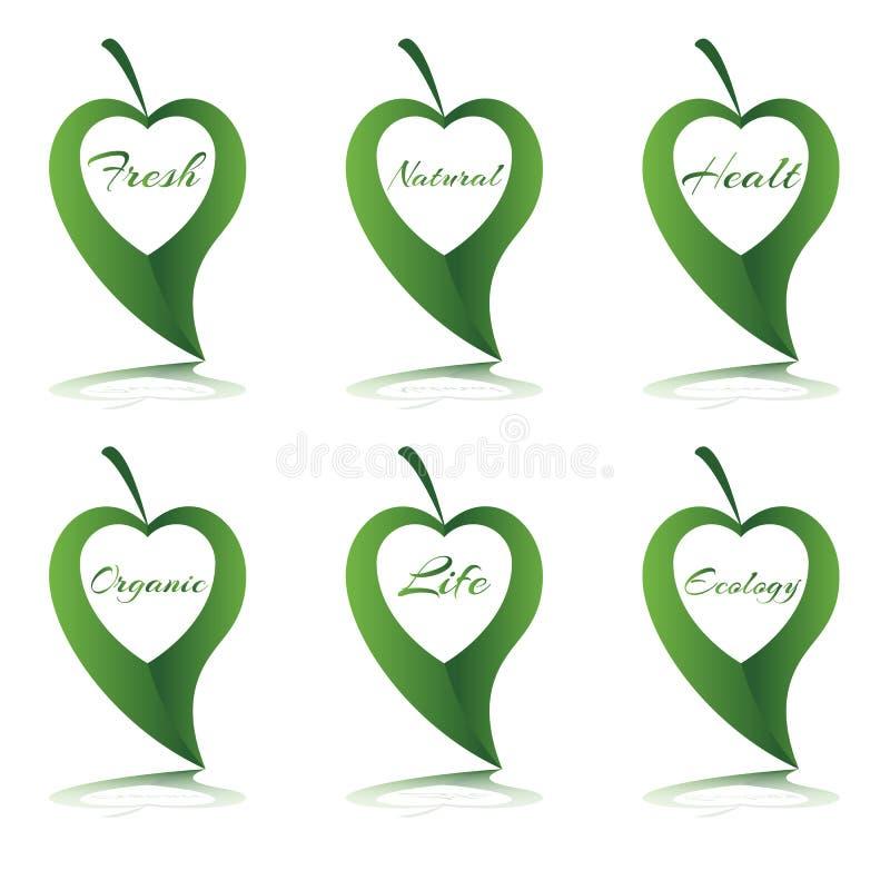 Símbolo do coração com palavra na folha verde fotografia de stock royalty free