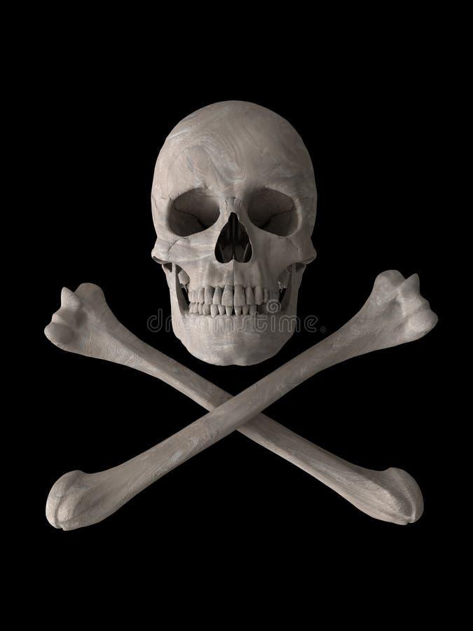 Símbolo do crânio do tóxico ou do veneno ilustração do vetor