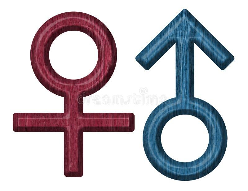Símbolo do homem e da mulher ilustração royalty free