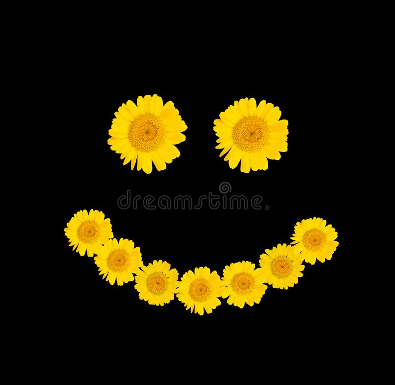 Símbolo do sorriso das flores amarelas brilhantes em um fundo isolado preto Modo do ver?o Close-up ilustração stock