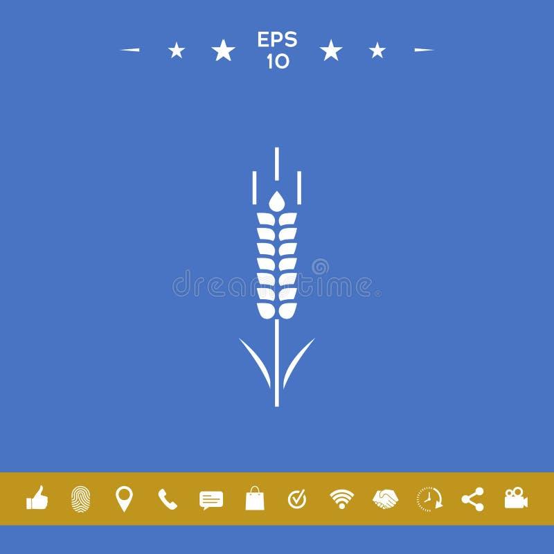 Símbolo do spikelet do trigo ou do centeio ilustração royalty free