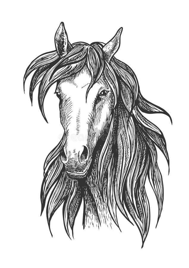 Símbolo excelente atlético del bosquejo del caballo de carreras de la bahía libre illustration