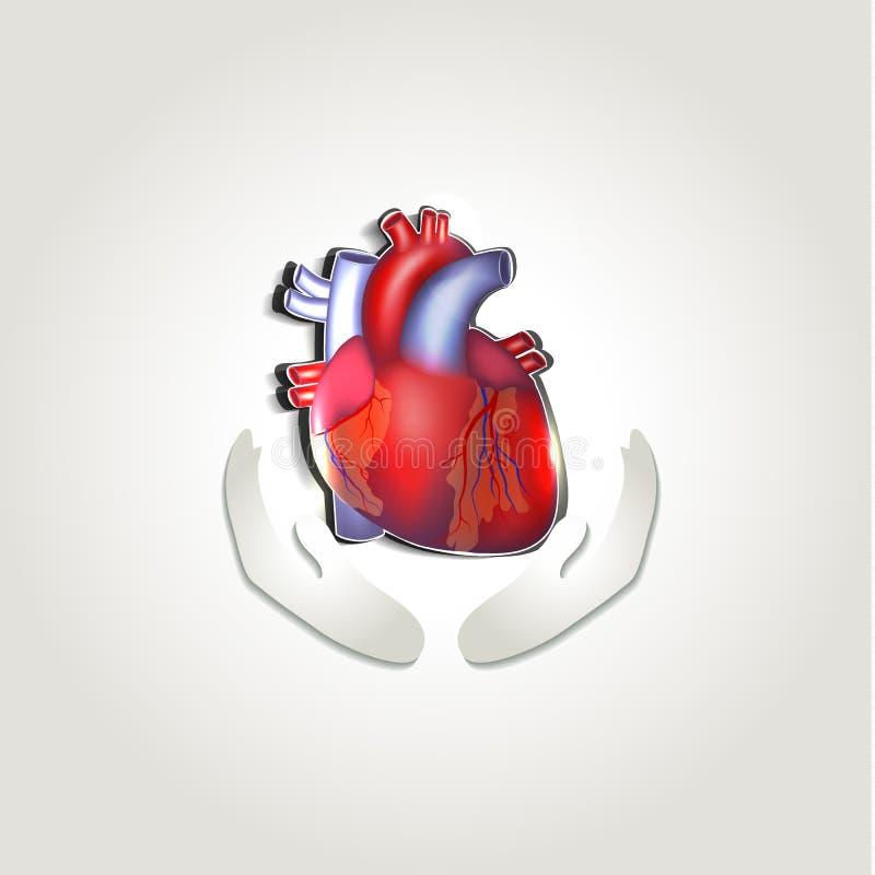 Símbolo humano dos cuidados médicos do coração ilustração royalty free