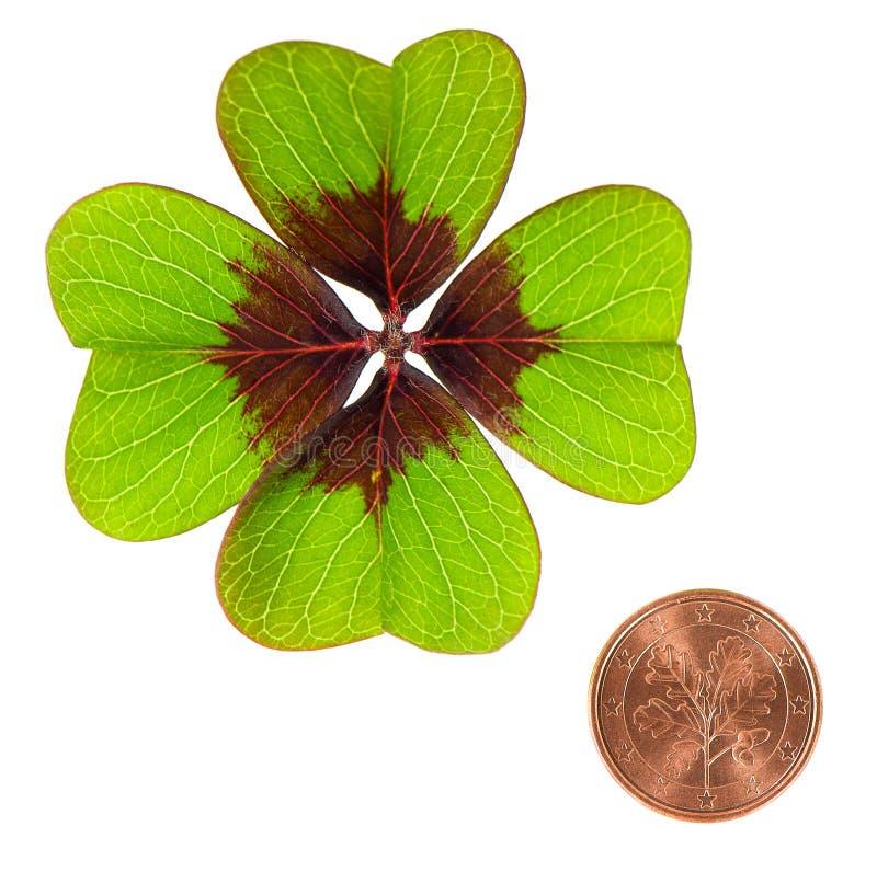 Símbolos blancos del fondo de la hoja del trébol de la moneda de la suerte imagen de archivo