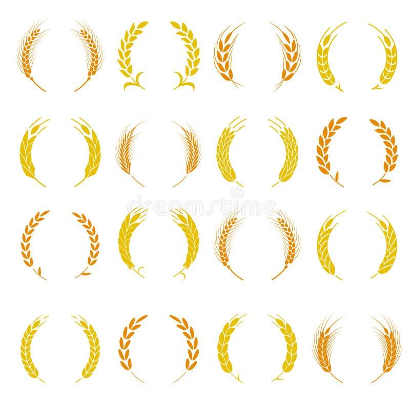 Símbolos da orelha do trigo para o projeto do logotipo ilustração stock