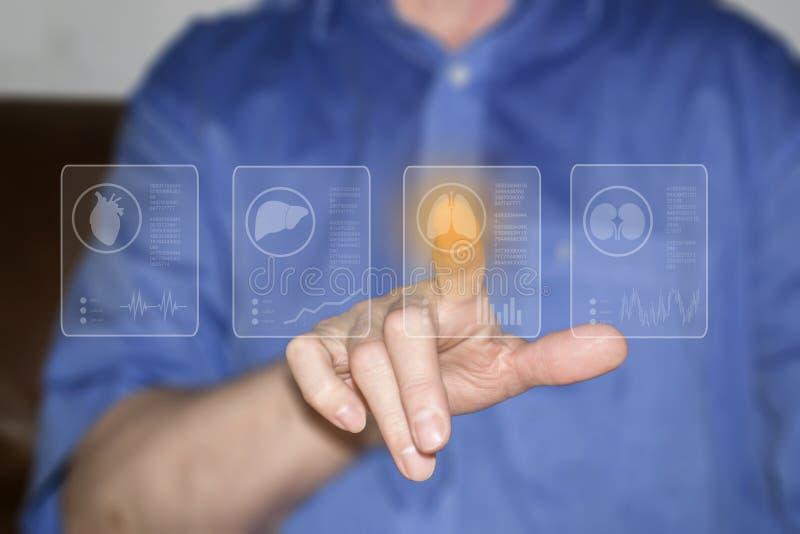 Símbolos de la mano y de los órganos humanos en las pantallas virtuales imágenes de archivo libres de regalías