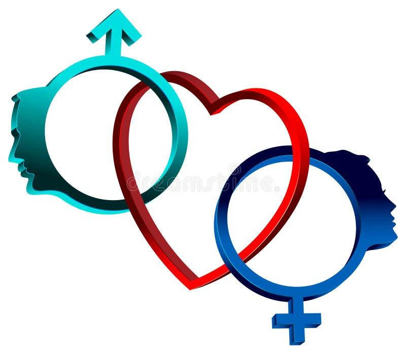 Símbolos de sexo ligados ilustração do vetor