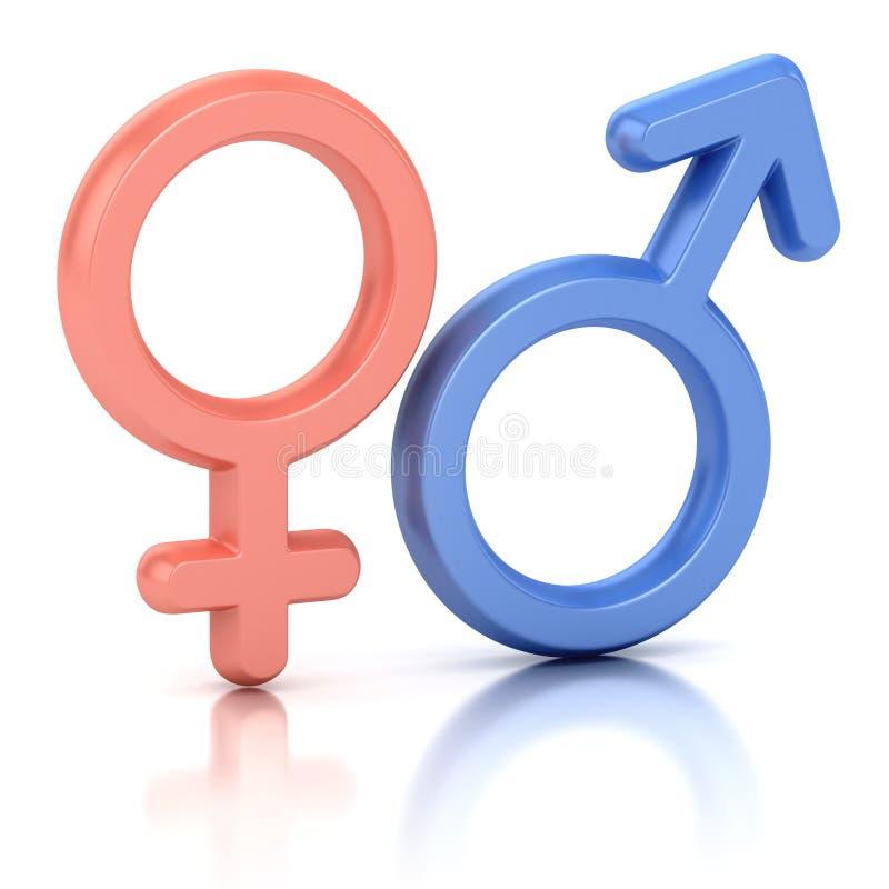 Símbolos de sexo masculino e fêmea ilustração do vetor
