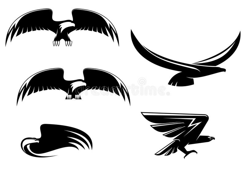 Símbolos e tatuagem da águia da heráldica ilustração royalty free
