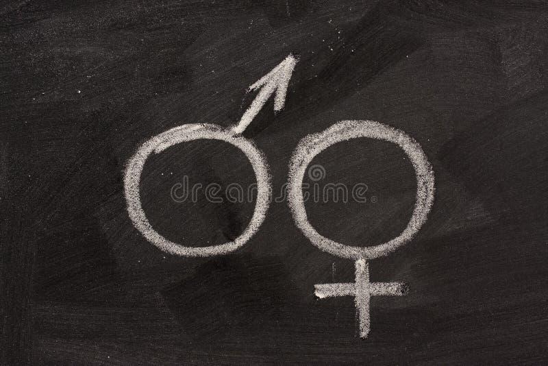 Símbolos masculinos e fêmeas do género no quadro-negro imagem de stock
