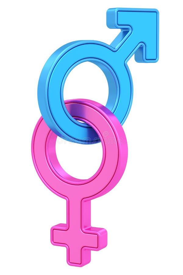 Símbolos masculinos e fêmeas do gênero acorrentados junto no branco ilustração stock