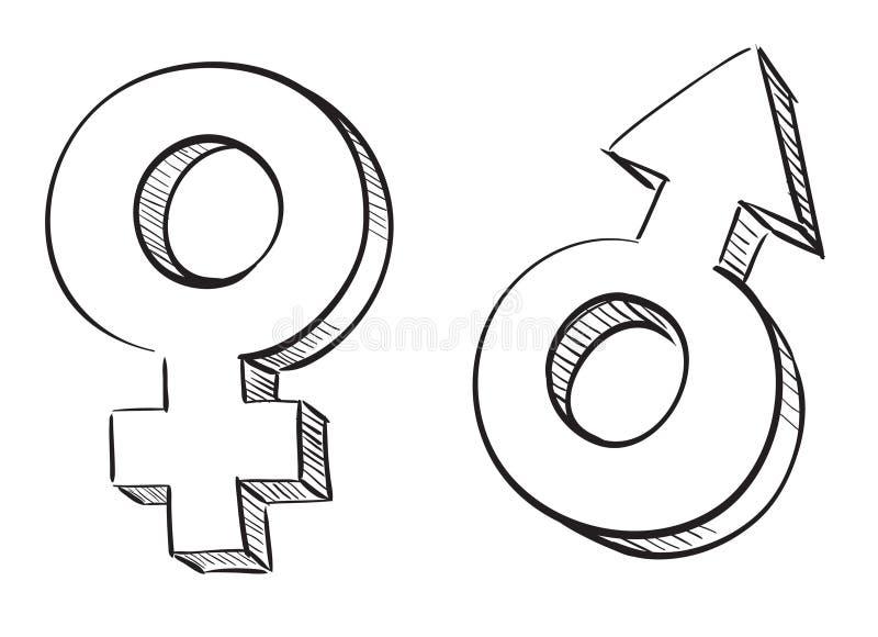 Símbolos masculinos y femeninos ilustración del vector