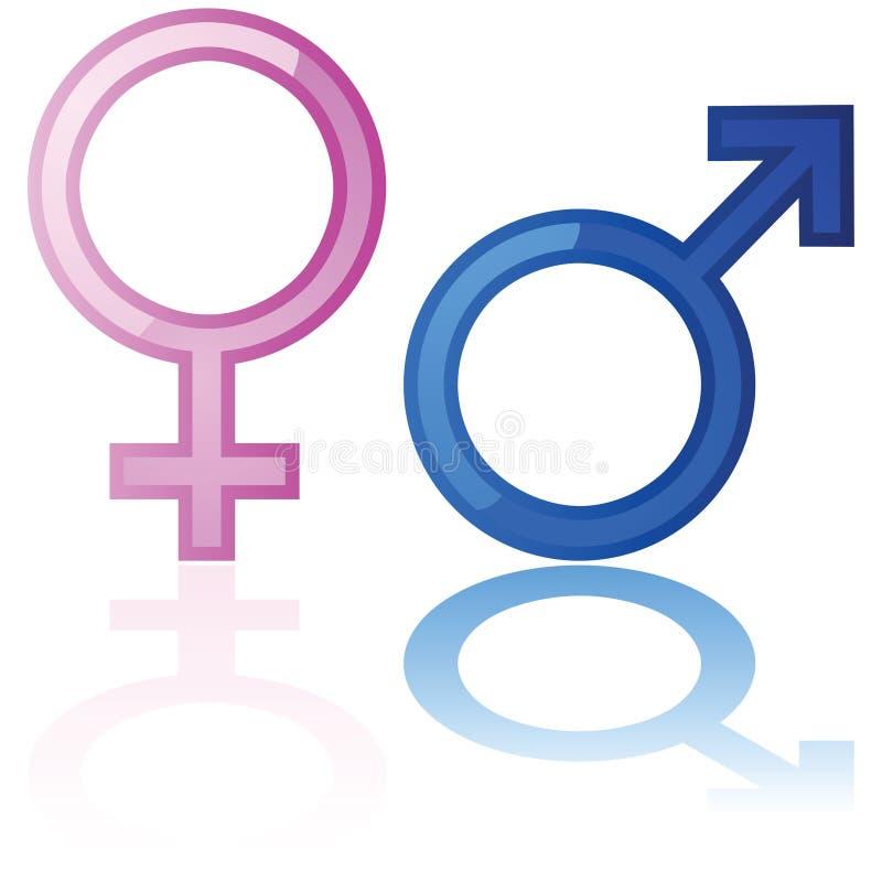 Símbolos masculinos y femeninos stock de ilustración
