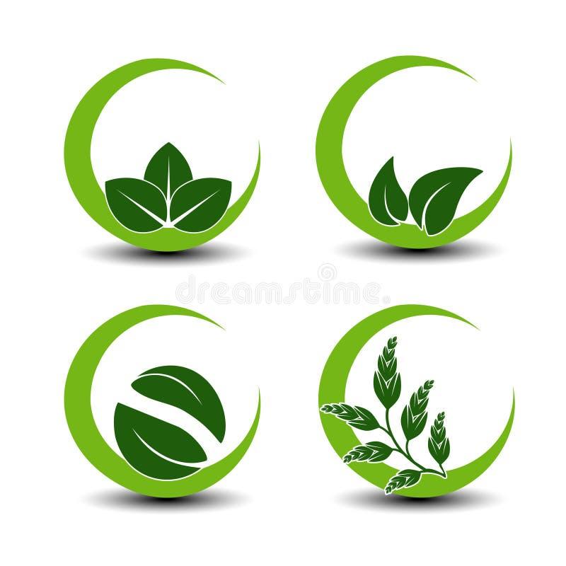 Símbolos naturales con la hoja - icono circular de la naturaleza stock de ilustración