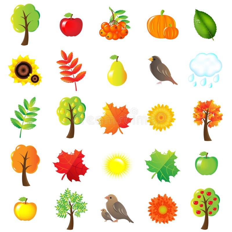 Símbolos y elementos del otoño ilustración del vector