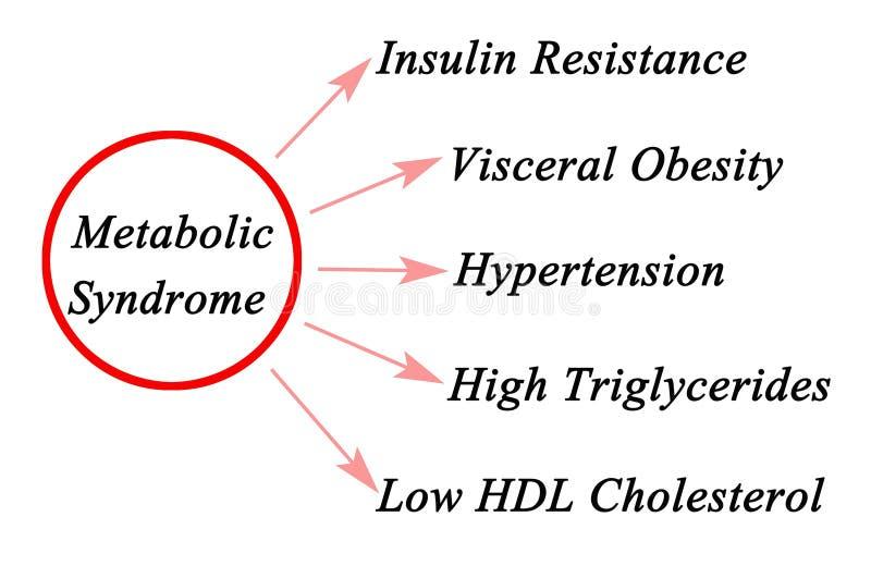 Síntomas del síndrome metabólico stock de ilustración