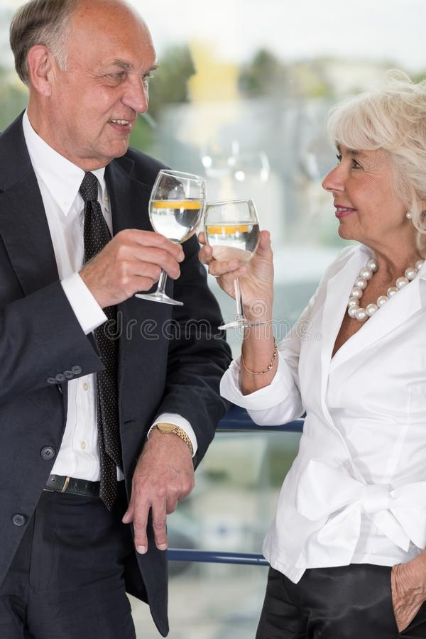 Sócios comerciais idosos fotografia de stock royalty free