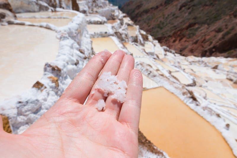 Sól od tarasowatych basenów murena Peru obraz royalty free