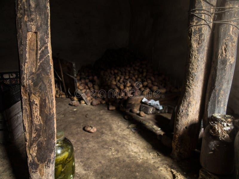 Sótano de la patata encendido por el sol fotografía de archivo libre de regalías