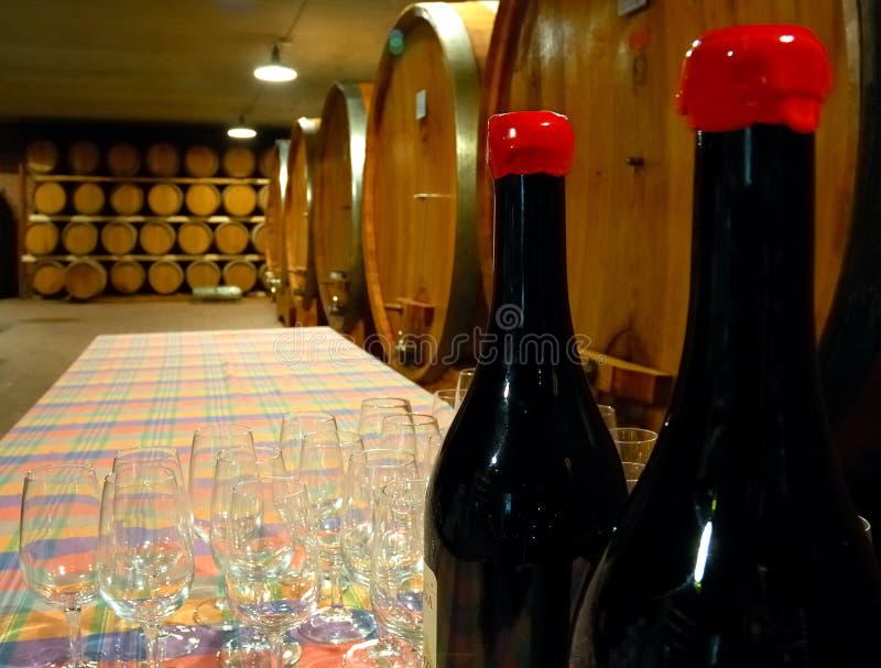 Sótano de Wineyard fotografía de archivo