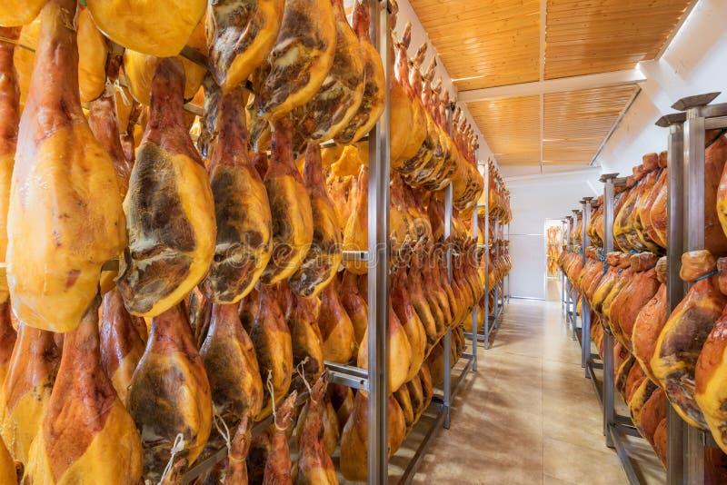 Sótano español del jamón Industria alimentaria imagen de archivo libre de regalías