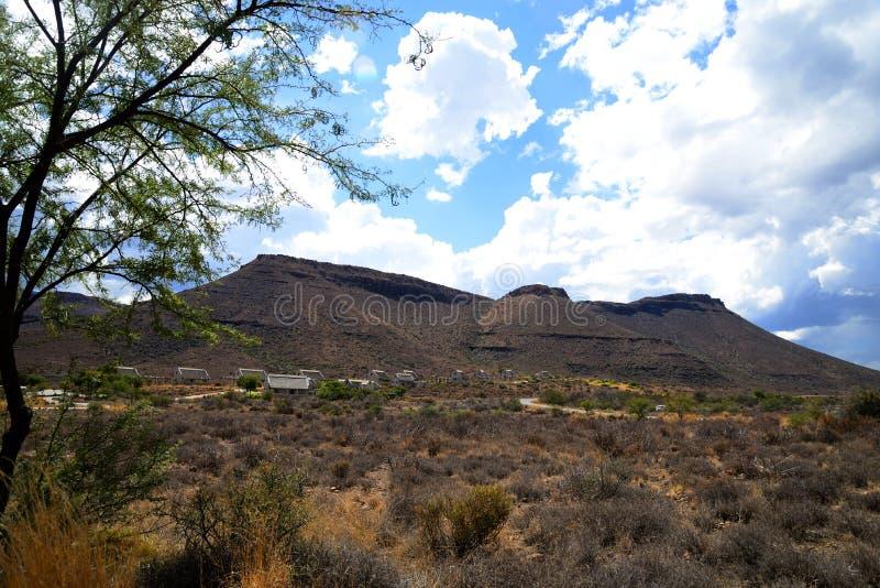 söder för nationalpark för liggande för karoo för kullar boendeafrica för ointressant udd överträffade plana den västra besökare royaltyfria bilder