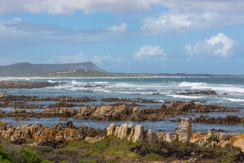 södra africa agulhasudd arkivbilder