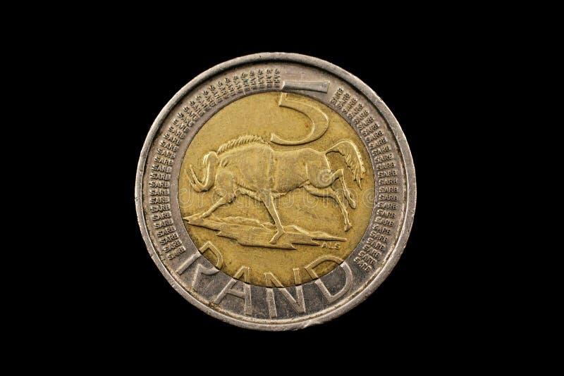 Södra - afrikan fem Rand Coin Isolated On Black royaltyfria foton