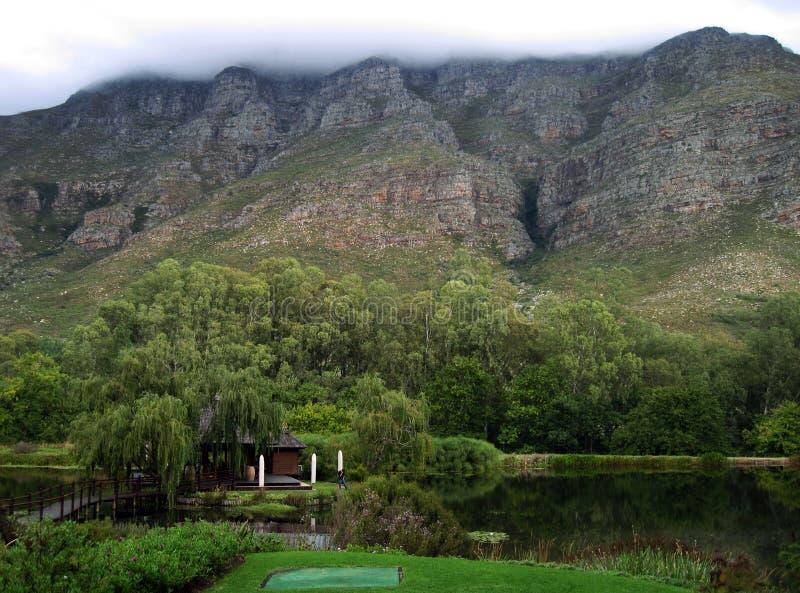 Södra - afrikan Winelands royaltyfri fotografi
