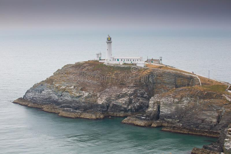 Södra buntfyr på ön av Anglesey, Wales royaltyfri foto