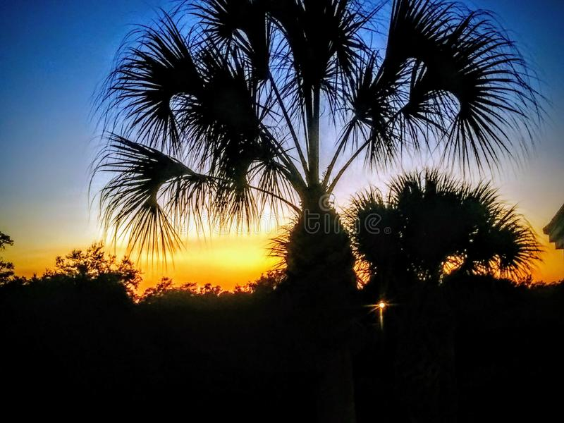 Södra florida solnedgång royaltyfria bilder