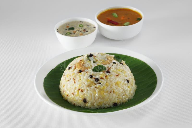 Södra indisk mat royaltyfri bild