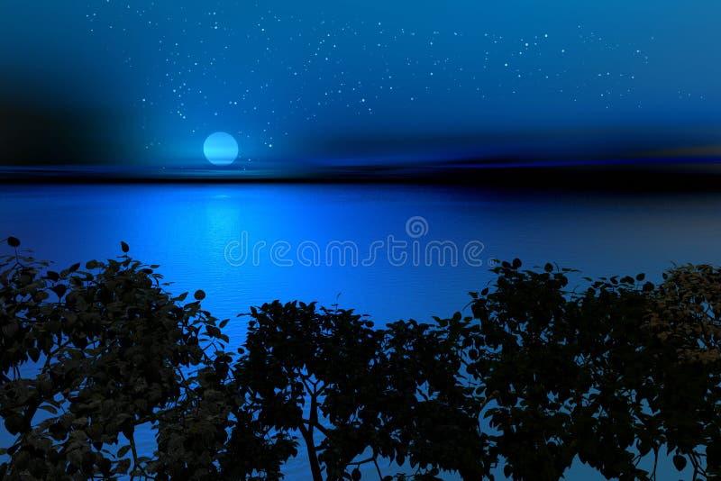 Södra Natt Royaltyfria Foton