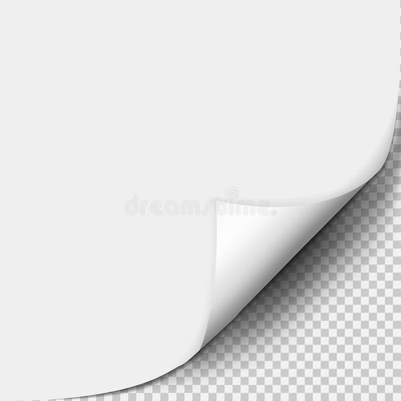 Söka krullningen med skugga på det tomma arket av papper arkivbilder