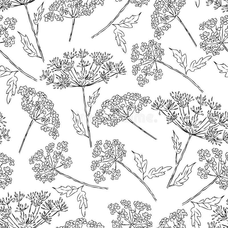 Sömlös bakgrund av de umbellate blommorna royaltyfri illustrationer