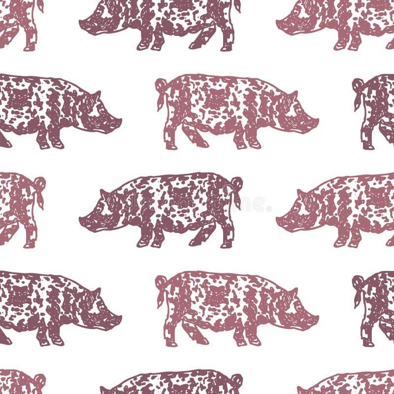 Sömlös bakgrund av prickiga svin royaltyfri illustrationer