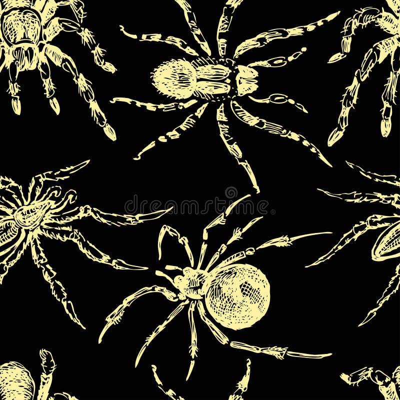 Sömlös bakgrund av skissar av giftiga spindlar stock illustrationer