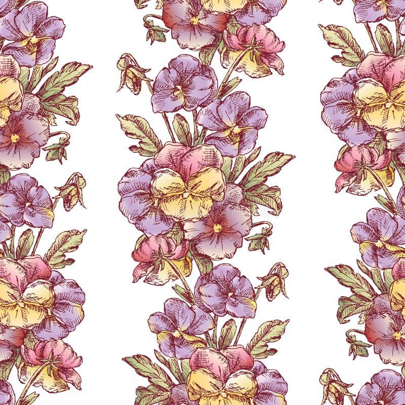 Sömlös bakgrund av skissar av trädgårdpansies vektor illustrationer