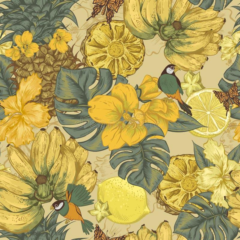 Sömlös bakgrund för tappning, tropisk frukt stock illustrationer
