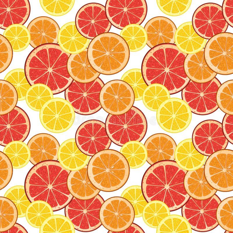 Sömlös bakgrund med citrusa skivor Illust för tegelplattafruktvektor royaltyfri illustrationer