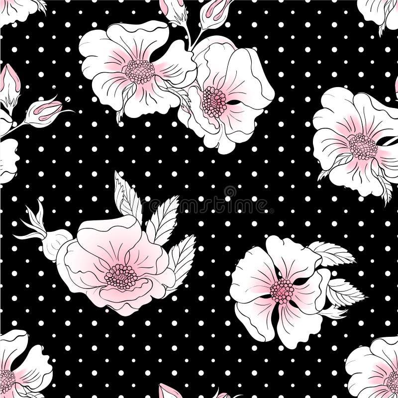 Sömlös bakgrund med vita och rosa lösa rosa blommor på en svart bakgrund med vita prickar vektor illustrationer