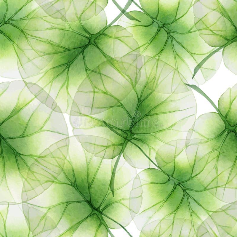 Sömlös blom- modell för vattenfärg med lotusblommasidor vektor illustrationer
