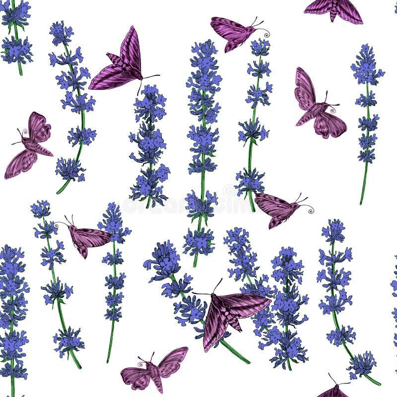 Sömlös blom- modell med lavendel och fjärilar på vit arkivbild