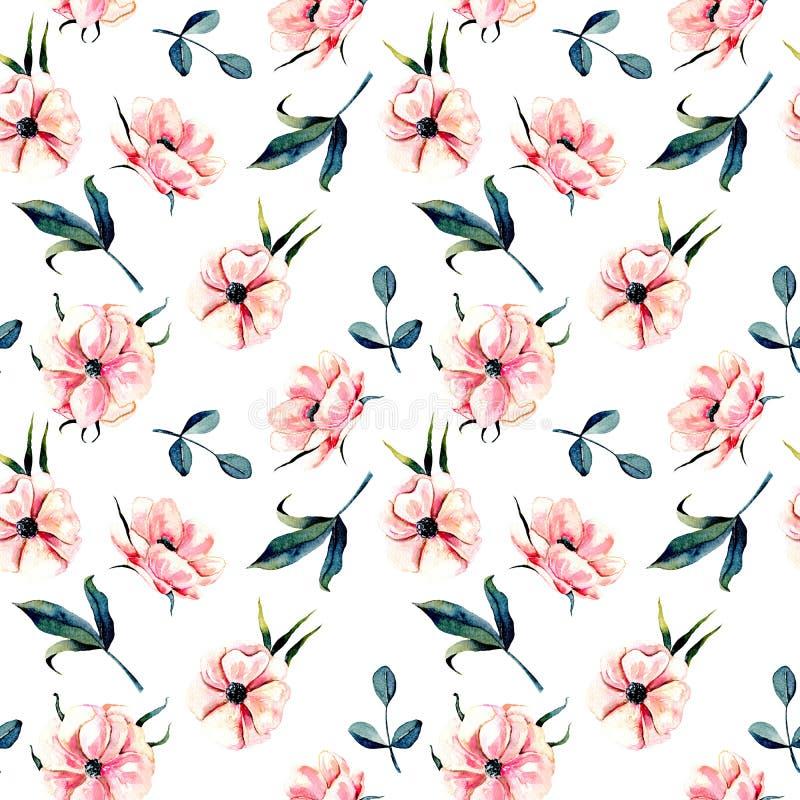 Sömlös blom- modell med rosa anemonblommor och gräsplansidor stock illustrationer