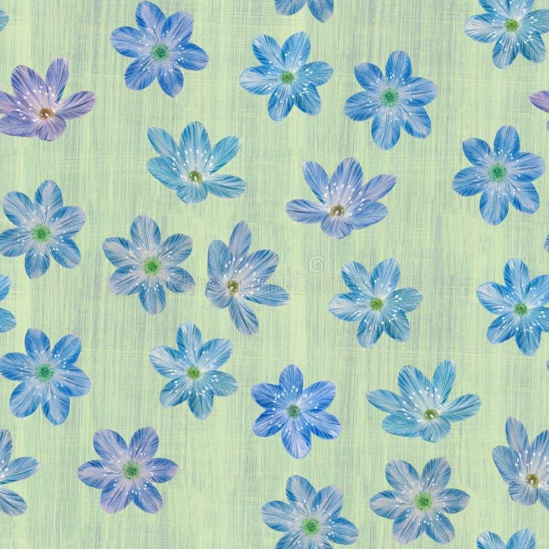 Sömlös botanisk modell av blåa blommor royaltyfri illustrationer