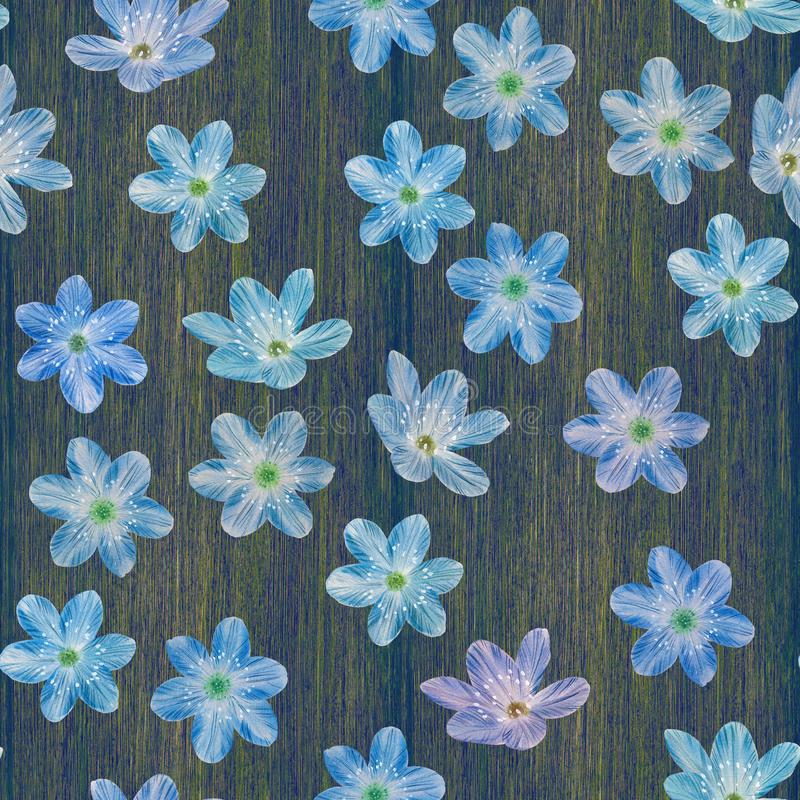 Sömlös botanisk modell av blåa blommor vektor illustrationer